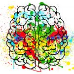 brain with colors to show its activity and connections